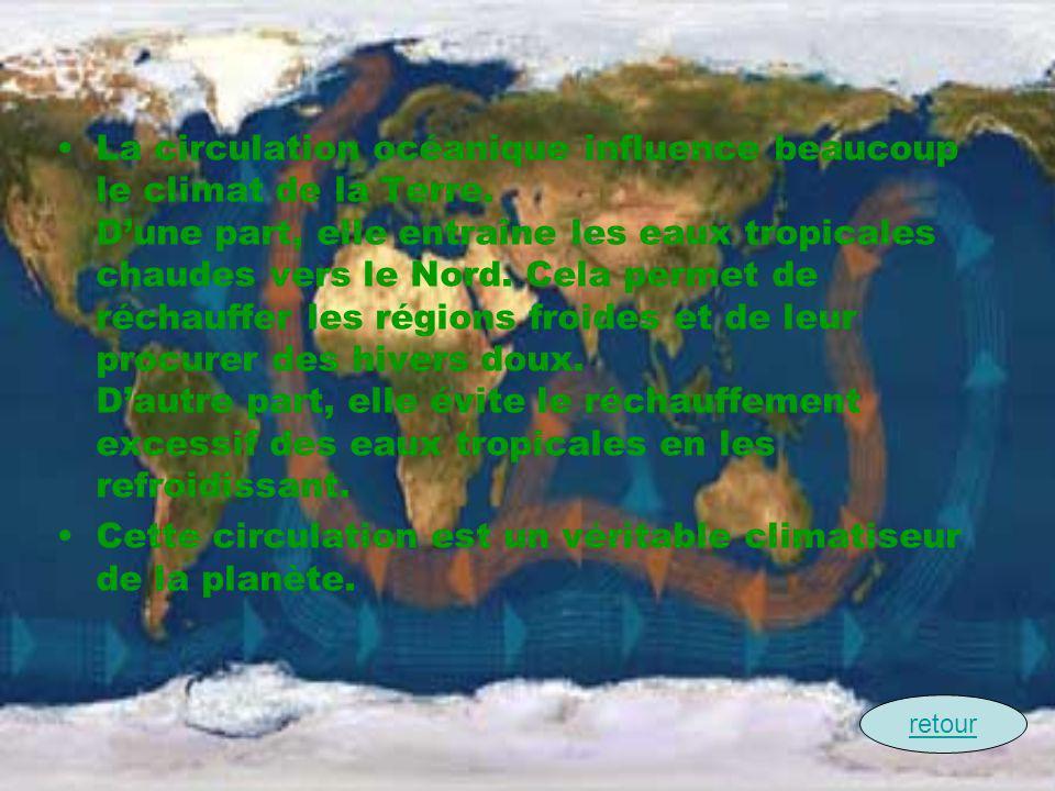 La circulation océanique influence beaucoup le climat de la Terre. Dune part, elle entraîne les eaux tropicales chaudes vers le Nord. Cela permet de r