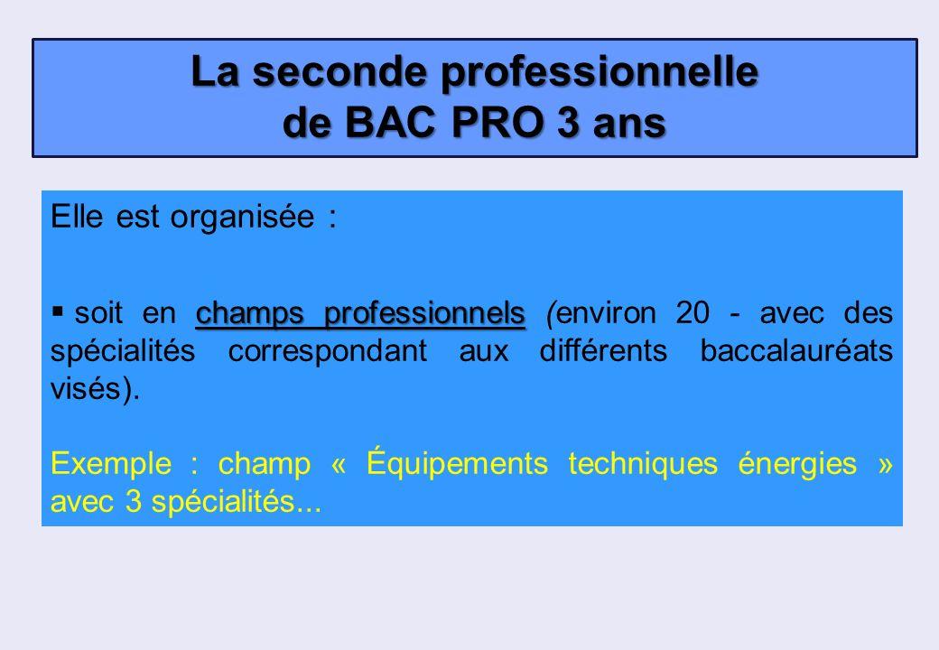 Elle est organisée : champs professionnels soit en champs professionnels (environ 20 - avec des spécialités correspondant aux différents baccalauréats