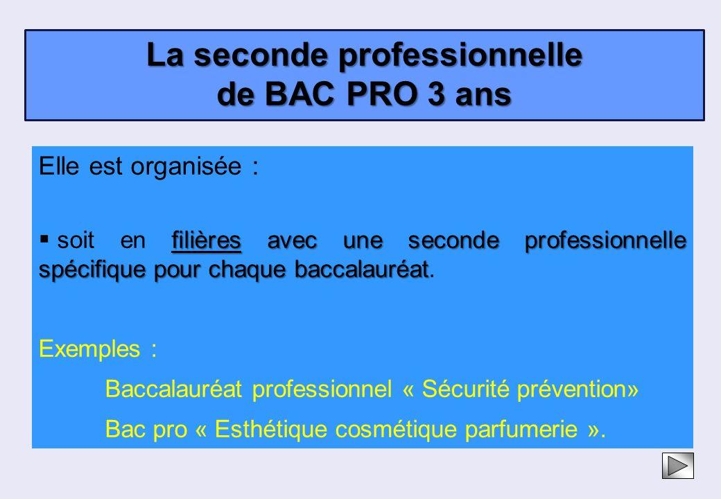 Elle est organisée : filières avec une seconde professionnelle spécifique pour chaque baccalauréat soit en filières avec une seconde professionnelle s