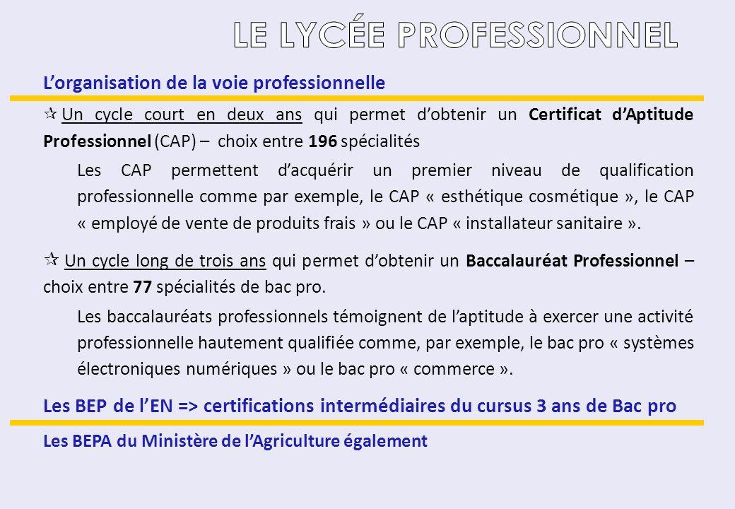 Lorganisation de la voie professionnelle Un cycle court en deux ans qui permet dobtenir un Certificat dAptitude Professionnel (CAP) – choix entre 196