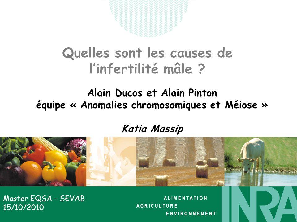 A L I M E N T A T I O N A G R I C U L T U R E E N V I R O N N E M E N T Master EQSA – SEVAB 15/10/2010 Quelles sont les causes de linfertilité mâle ?