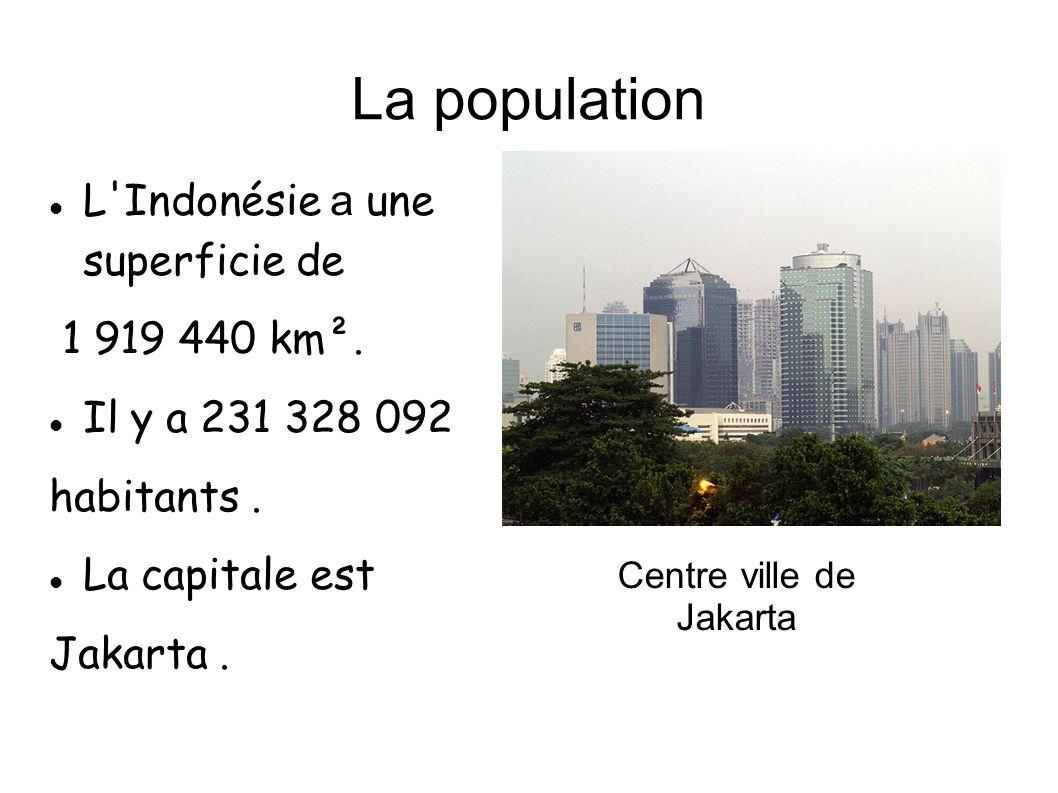 La population L'Indonésie a une superficie de 1 919 440 km². Il y a 231 328 092 habitants. La capitale est Jakarta. Centre ville de Jakarta