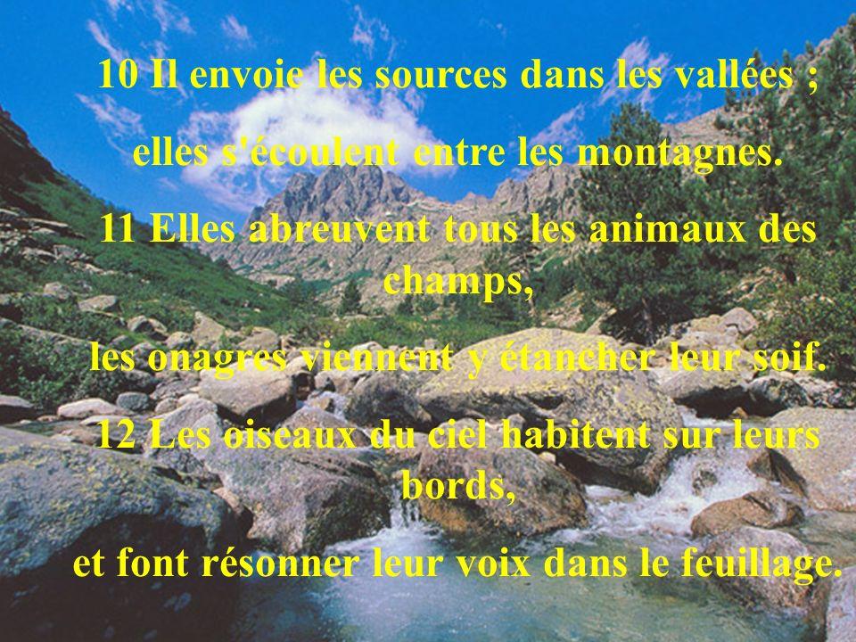 10 Il envoie les sources dans les vallées ; elles s'écoulent entre les montagnes. 11 Elles abreuvent tous les animaux des champs, les onagres viennent