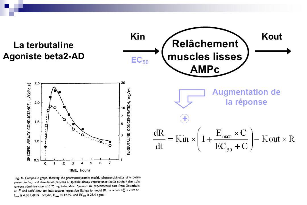 Relâchement muscles lisses AMPc KinKout Augmentation de la réponse La terbutaline Agoniste beta2-AD EC 50 +