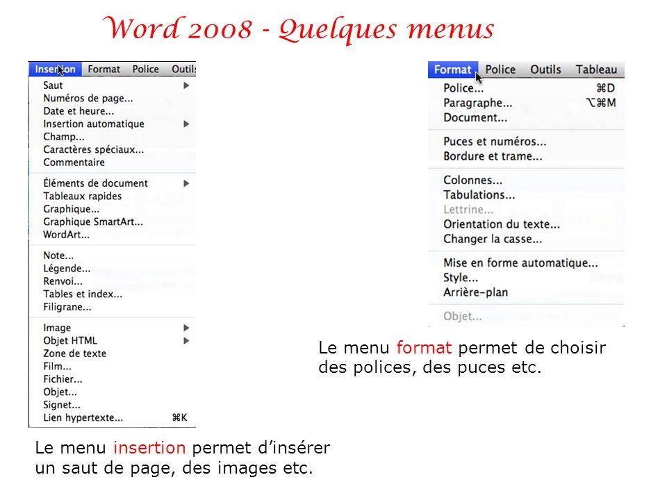 Le menu insertion permet dinsérer un saut de page, des images etc. Le menu format permet de choisir des polices, des puces etc.