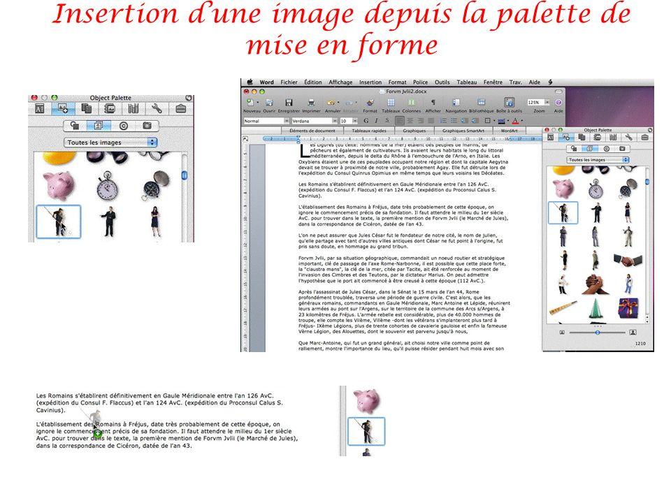 Insertion dune image depuis la palette de mise en forme
