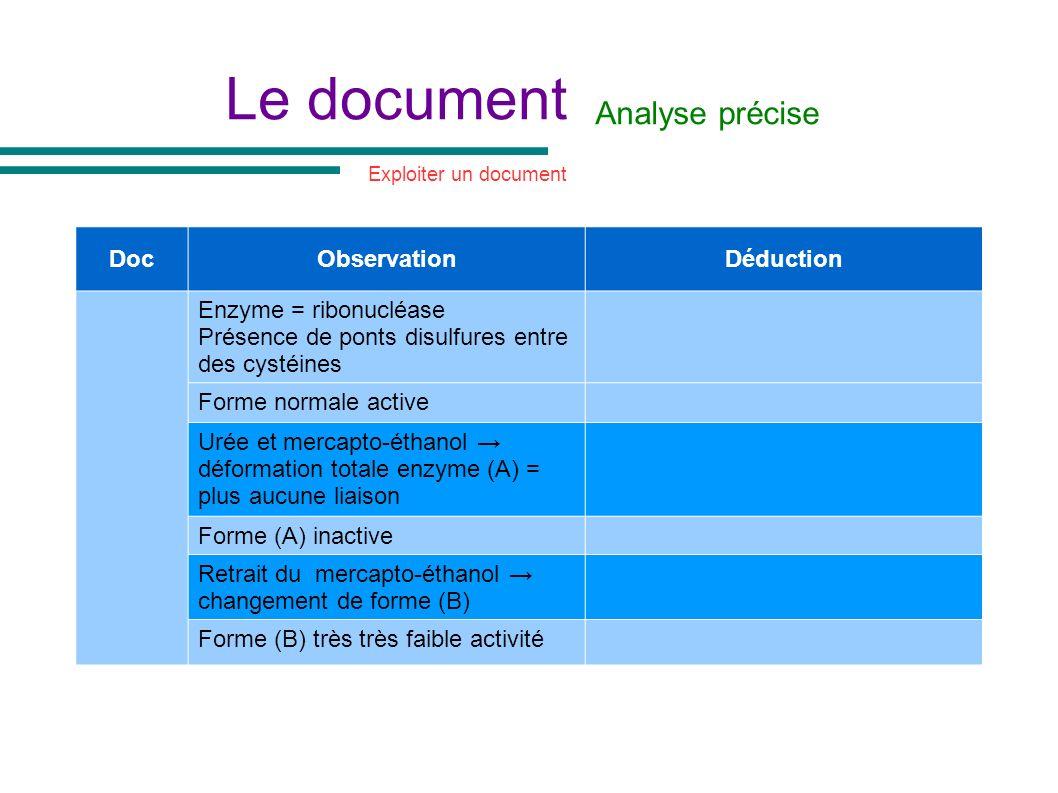 Le document Analyse précise DocObservationDéduction Enzyme = ribonucléase Présence de ponts disulfures entre des cystéines Forme normale active Urée e