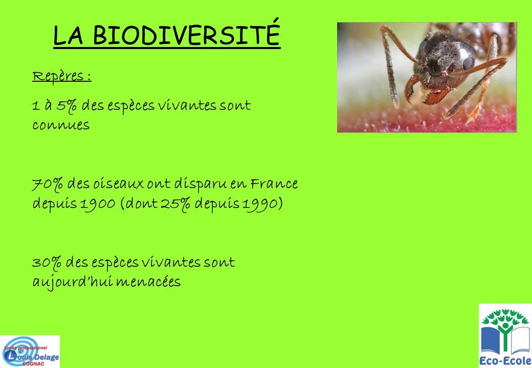 LA BIODIVERSITÉ Repères : 1 à 5% des espèces vivantes sont connues 70% des oiseaux ont disparu en France depuis 1900 (dont 25% depuis 1990) 30% des es
