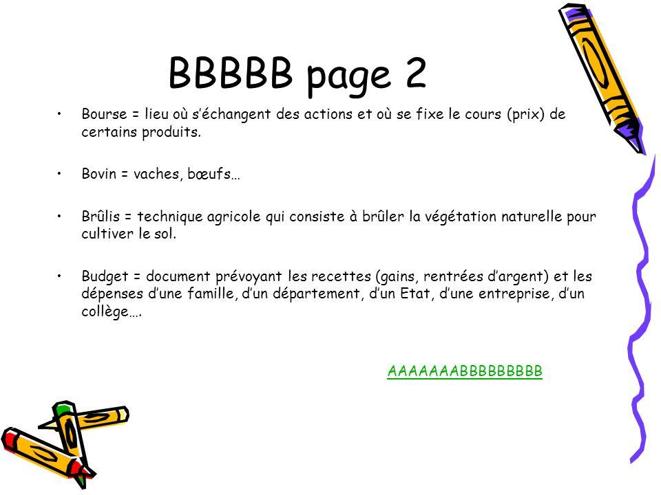 BBBBB page 2 Bourse = lieu où séchangent des actions et où se fixe le cours (prix) de certains produits. Bovin = vaches, bœufs… Brûlis = technique agr