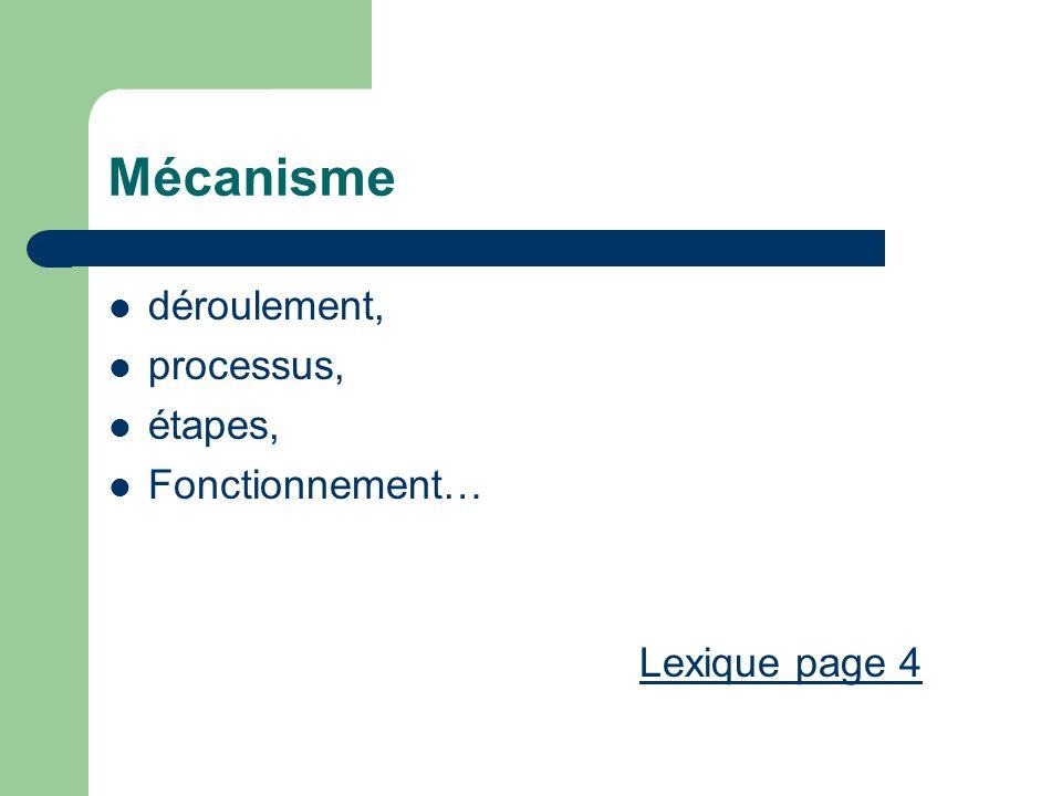 Mécanisme déroulement, processus, étapes, Fonctionnement… Lexique page 4