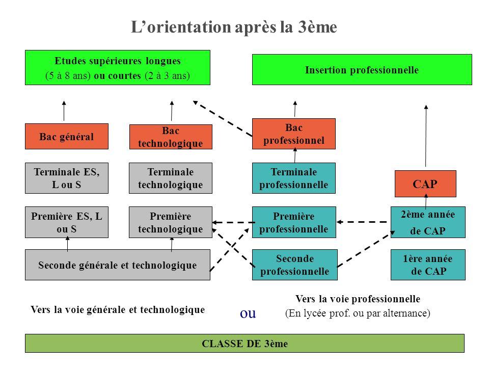 3 Bac général Vers la voie générale et technologique Vers la voie professionnelle (En lycée prof. ou par alternance) Seconde générale et technologique