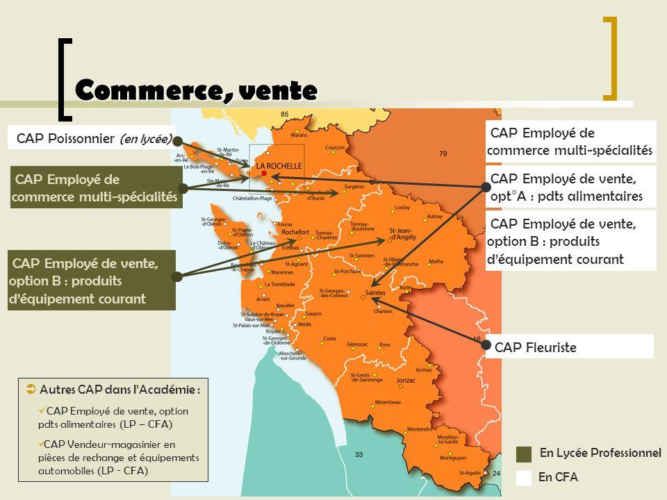 Commerce, vente CAP Employé de commerce multi-spécialités Autres CAP dans lAcadémie : CAP Employé de vente, option pdts alimentaires (LP – CFA) CAP Ve
