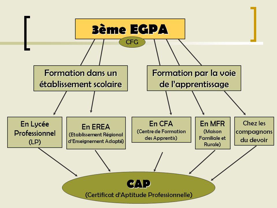 En EREA (Etablissement Régional dEnseignement Adapté) En Lycée Professionnel (LP) Formation dans un établissement scolaire En CFA (Centre de Formation