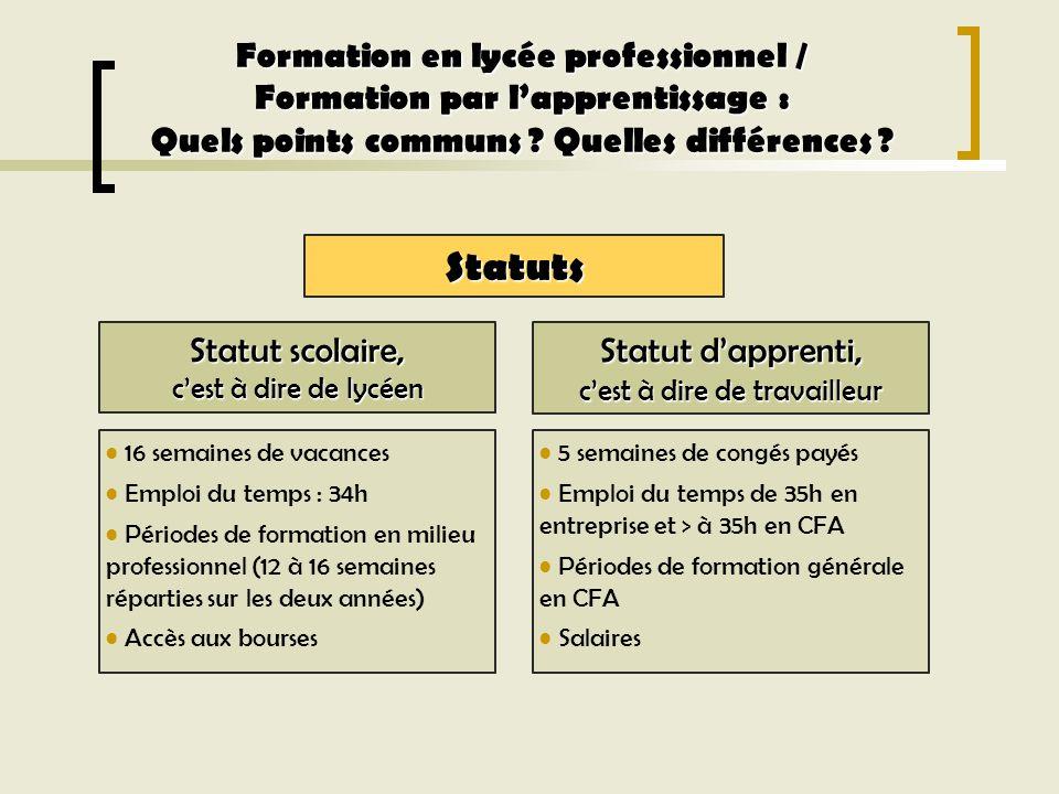 Formation en lycée professionnel Formation par lapprentissage (CFA) CAP (Certificat dAptitude Professionnelle) Formation en lycée professionnel / Formation par lapprentissage : Quels points communs .
