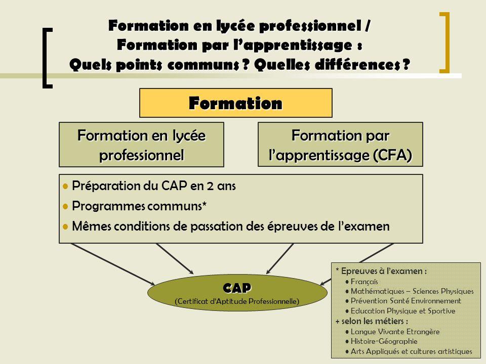 Formation en lycée professionnel Formation par lapprentissage (CFA) CAP (Certificat dAptitude Professionnelle) Formation en lycée professionnel / Form