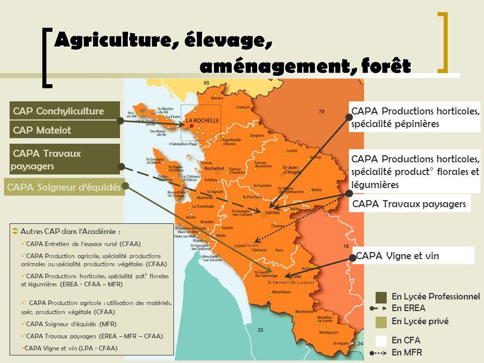 Agriculture, élevage, aménagement, forêt CAP Conchyliculture Autres CAP dans lAcadémie : CAPA Entretien de lespace rural (CFAA) CAPA Production agrico
