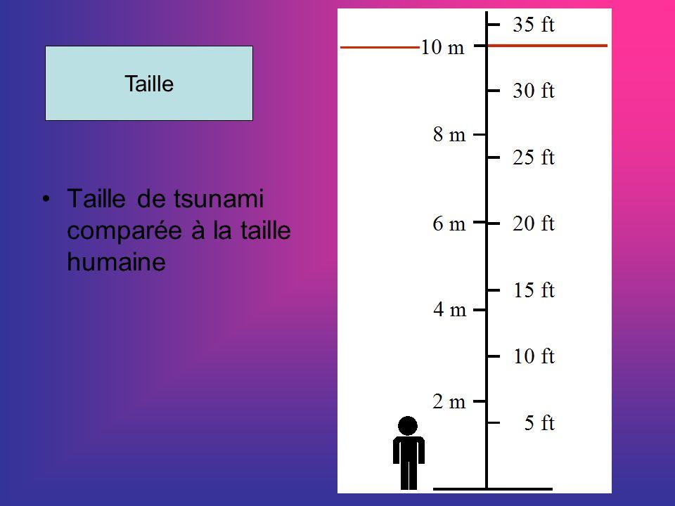 Taille de tsunami comparée à la taille humaine Taille