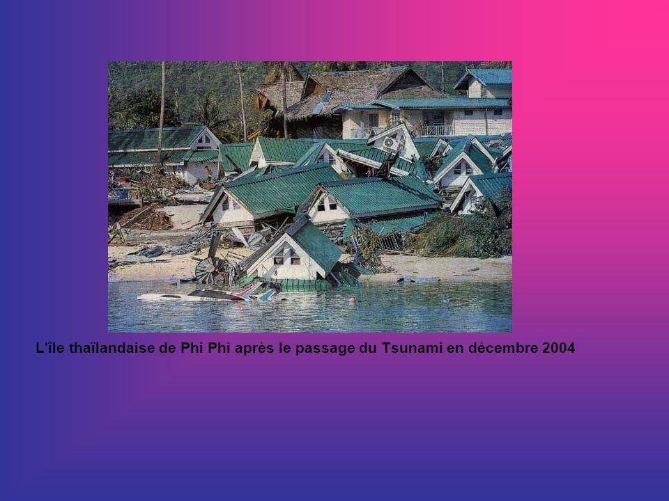 L'île thaïlandaise de Phi Phi après le passage du Tsunami en décembre 2004
