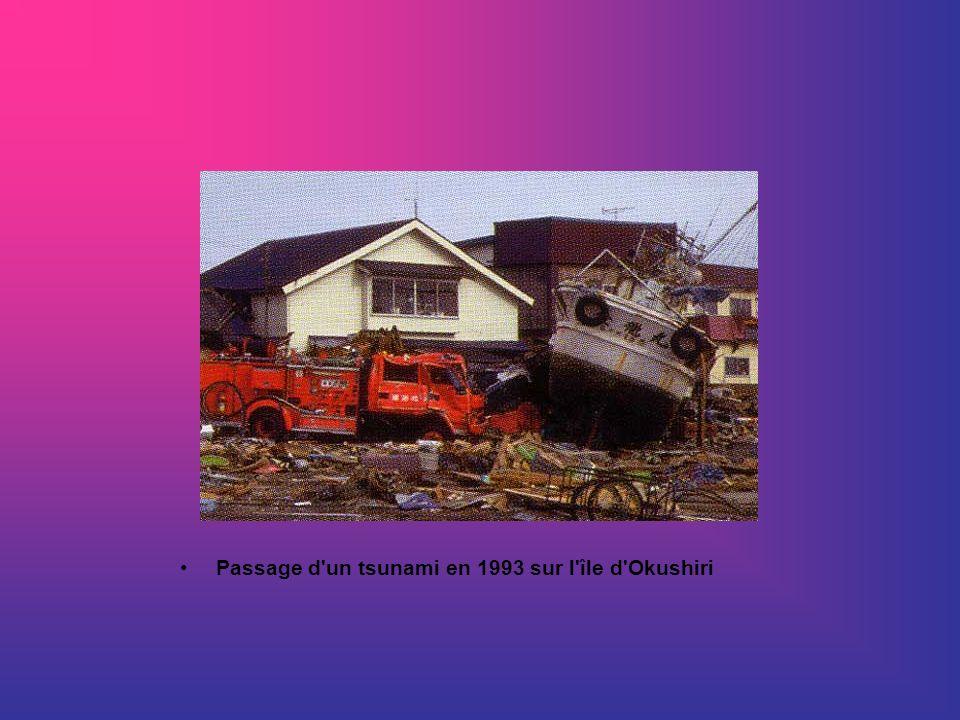 Passage d'un tsunami en 1993 sur l'île d'Okushiri