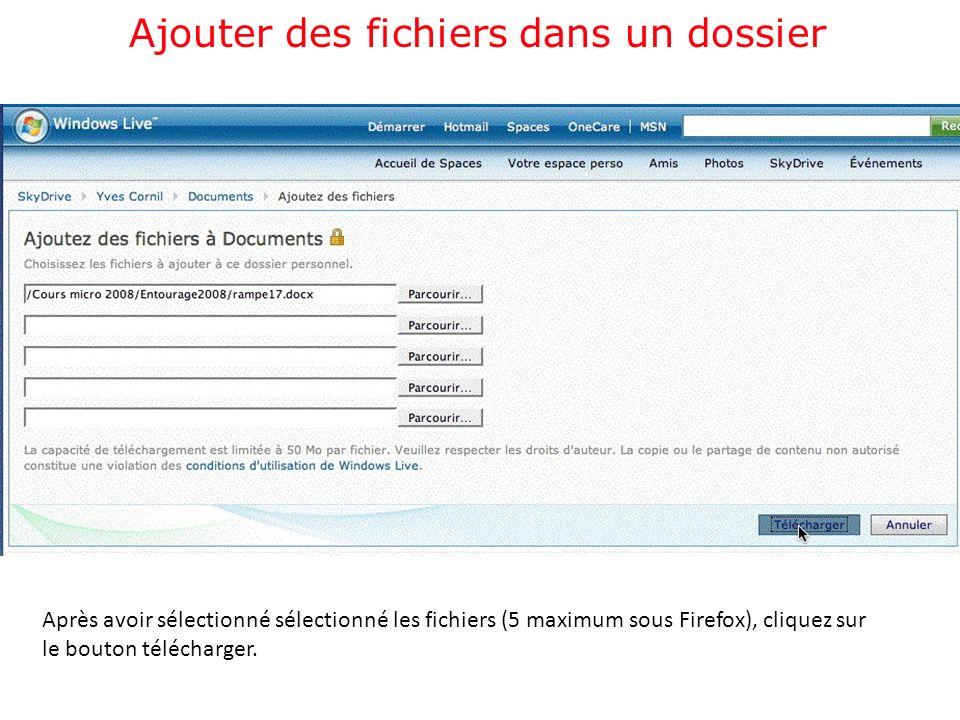 Après avoir sélectionné sélectionné les fichiers (5 maximum sous Firefox), cliquez sur le bouton télécharger.