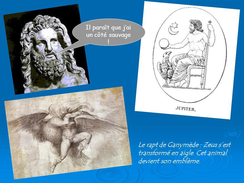 Il paraît que jai un côté sauvage ! Le rapt de Ganymède : Zeus sest transformé en aigle. Cet animal devient son emblème.