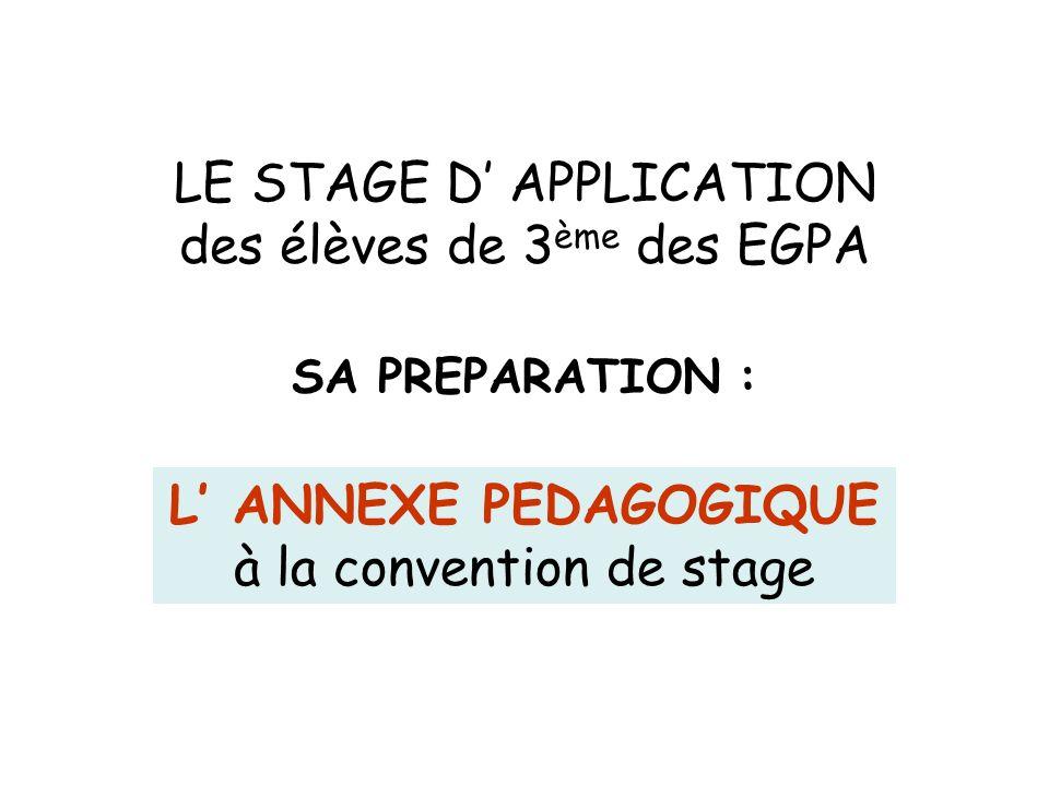 LE STAGE D APPLICATION des élèves de 3 ème des EGPA SA PREPARATION : L ANNEXE PEDAGOGIQUE à la convention de stage