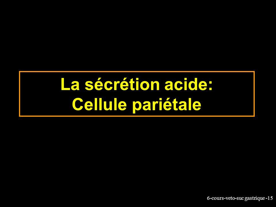 6-cours-veto-suc gastrique -15 La sécrétion acide: Cellule pariétale