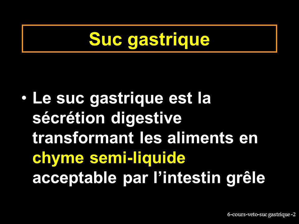 6-cours-veto-suc gastrique -2 Suc gastrique Le suc gastrique est la sécrétion digestive transformant les aliments en chyme semi-liquide acceptable par