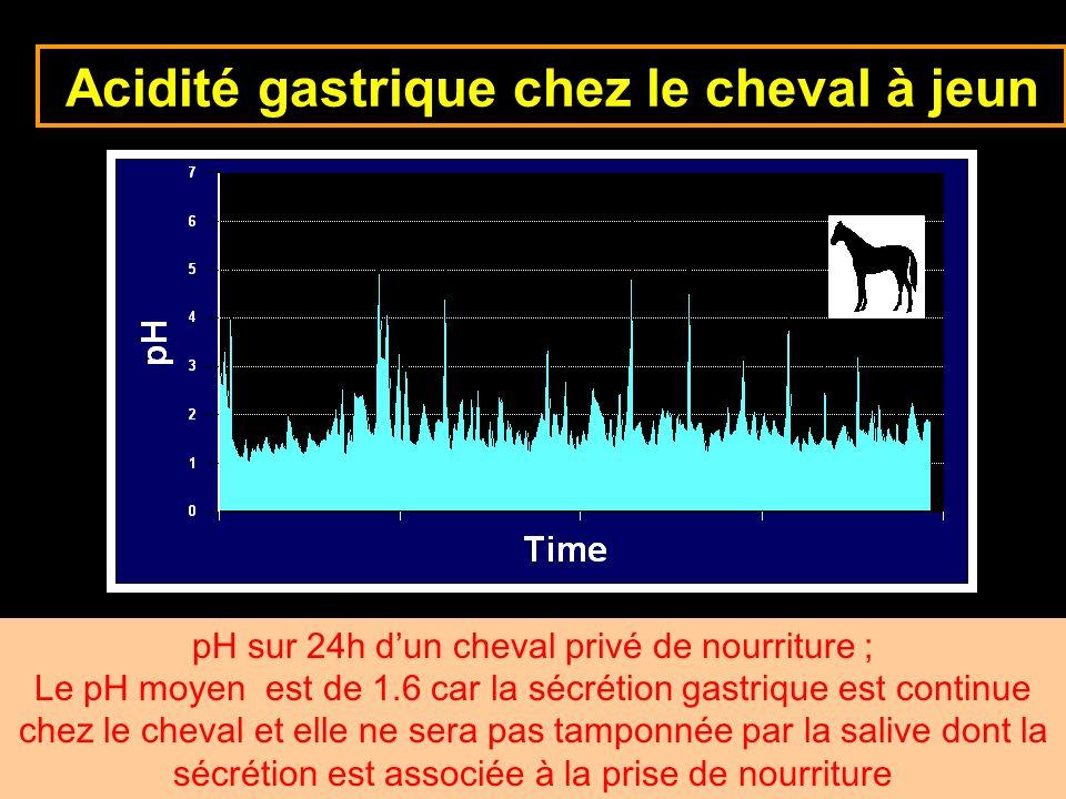 6-cours-veto-suc gastrique -23 Acidité gastrique chez le cheval à jeun pH sur 24h dun cheval privé de nourriture ; Le pH moyen est de 1.6 car la sécré
