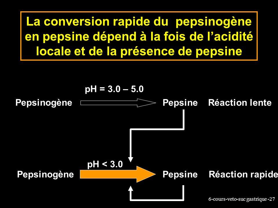 6-cours-veto-suc gastrique -27 La conversion rapide du pepsinogène en pepsine dépend à la fois de lacidité locale et de la présence de pepsine Pepsino
