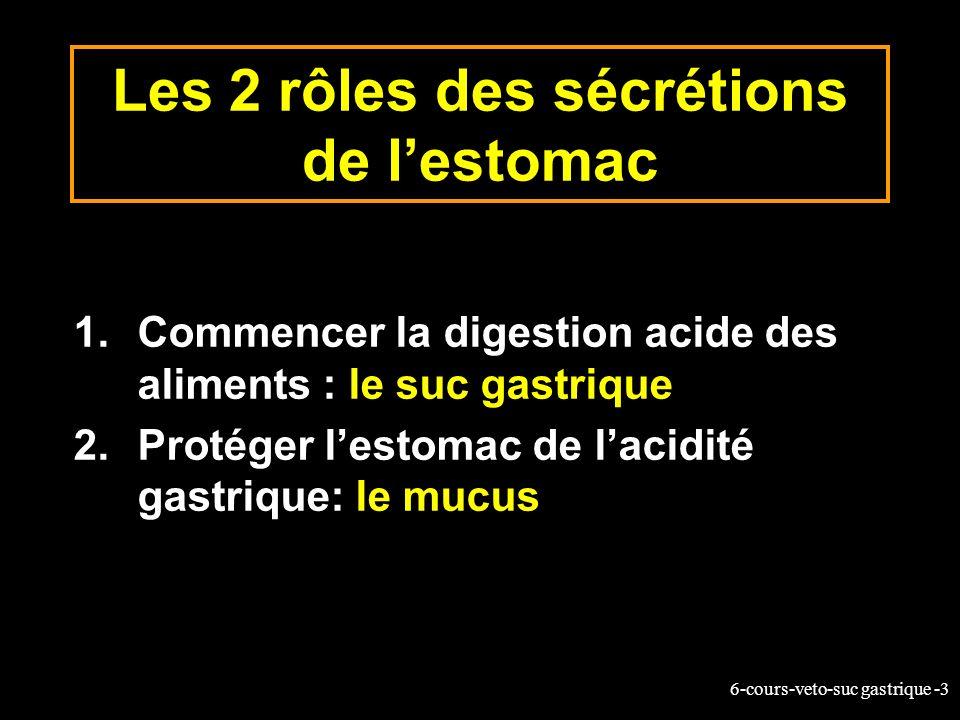 6-cours-veto-suc gastrique -3 Les 2 rôles des sécrétions de lestomac 1.Commencer la digestion acide des aliments : le suc gastrique 2.Protéger lestoma