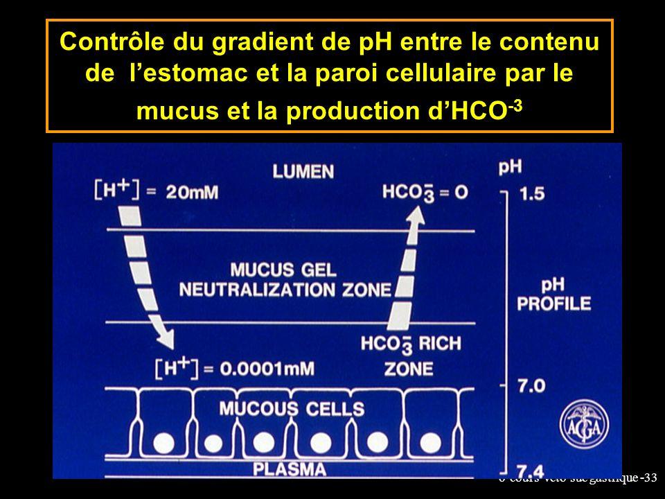 6-cours-veto-suc gastrique -33 Contrôle du gradient de pH entre le contenu de lestomac et la paroi cellulaire par le mucus et la production dHCO -3