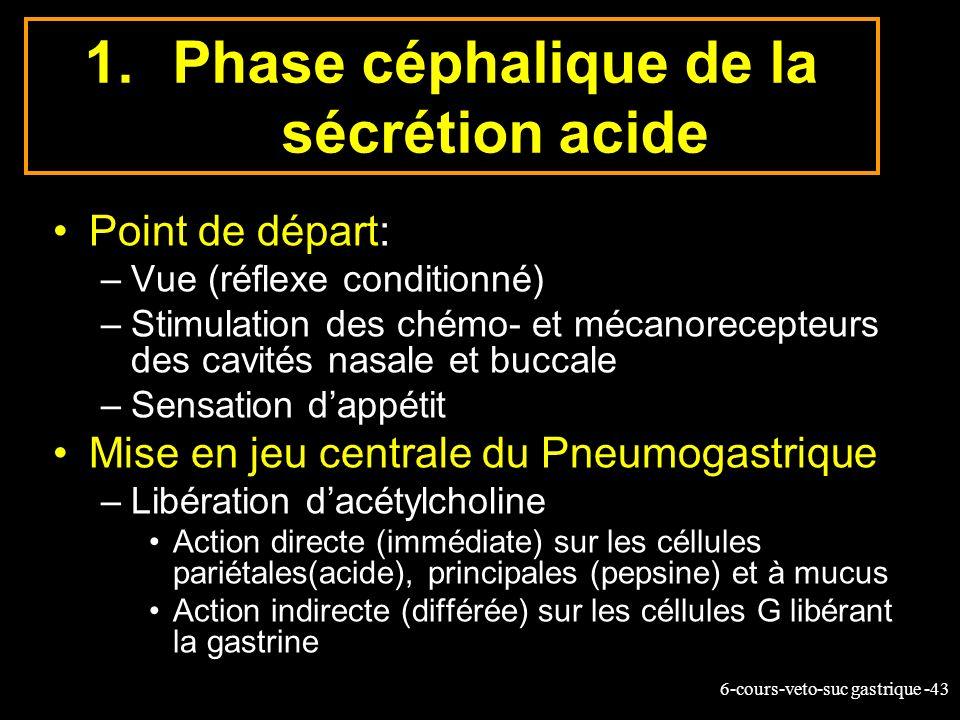 6-cours-veto-suc gastrique -43 1.Phase céphalique de la sécrétion acide Point de départ: –Vue (réflexe conditionné) –Stimulation des chémo- et mécanor