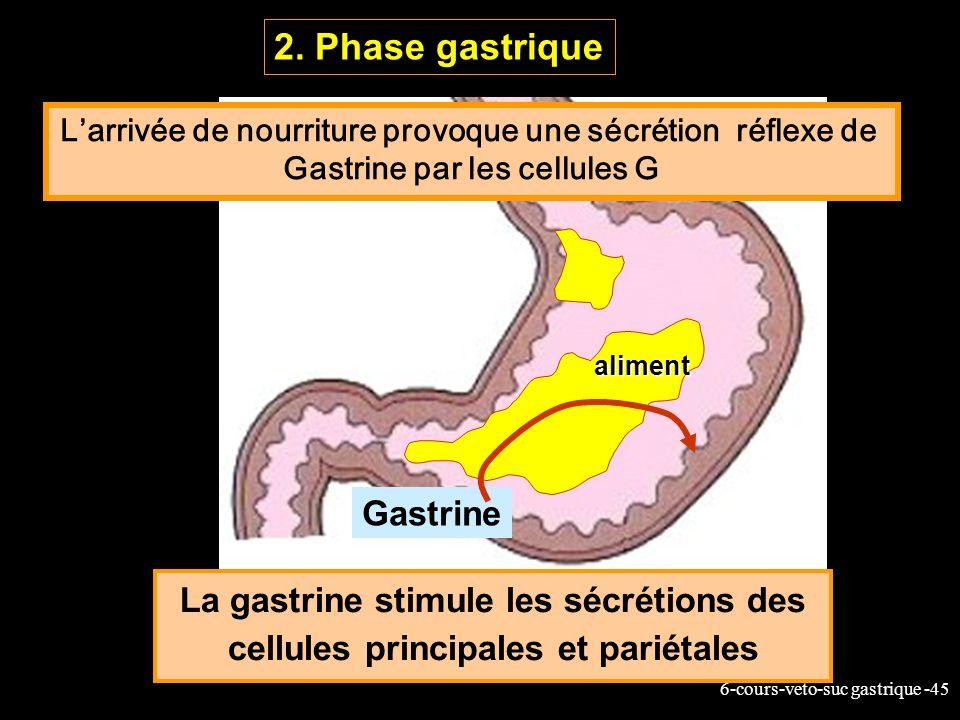 6-cours-veto-suc gastrique -45 La gastrine stimule les sécrétions des cellules principales et pariétales 2. Phase gastrique Gastrine aliment Larrivée