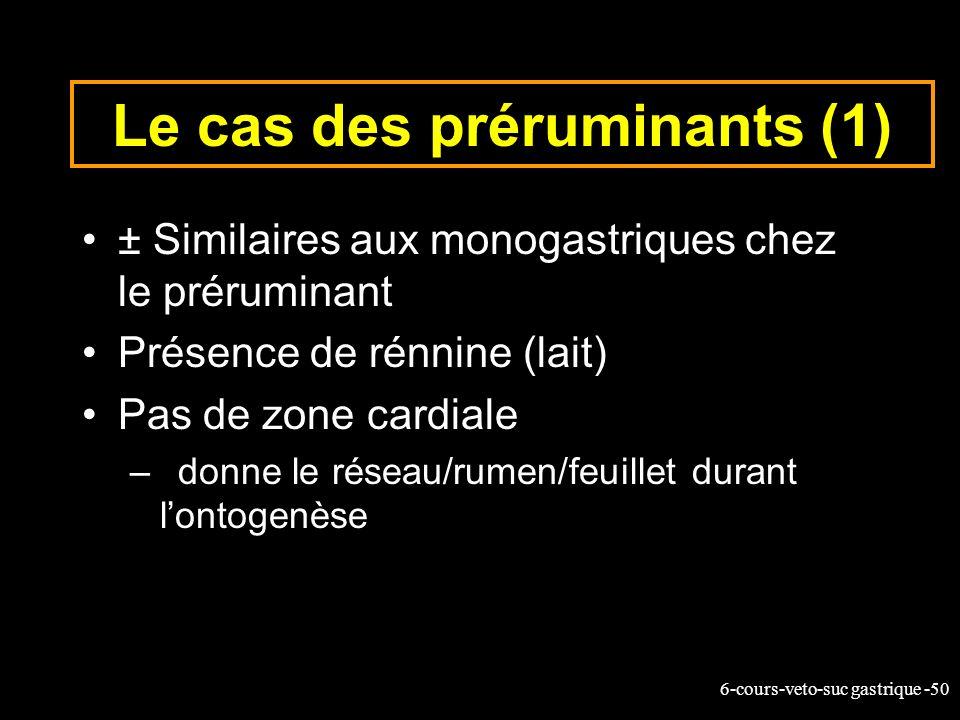 6-cours-veto-suc gastrique -50 Le cas des préruminants (1) ± Similaires aux monogastriques chez le préruminant Présence de rénnine (lait) Pas de zone