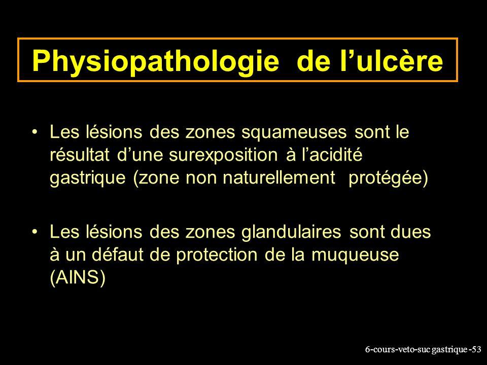 6-cours-veto-suc gastrique -53 Physiopathologie de lulcère Les lésions des zones squameuses sont le résultat dune surexposition à lacidité gastrique (