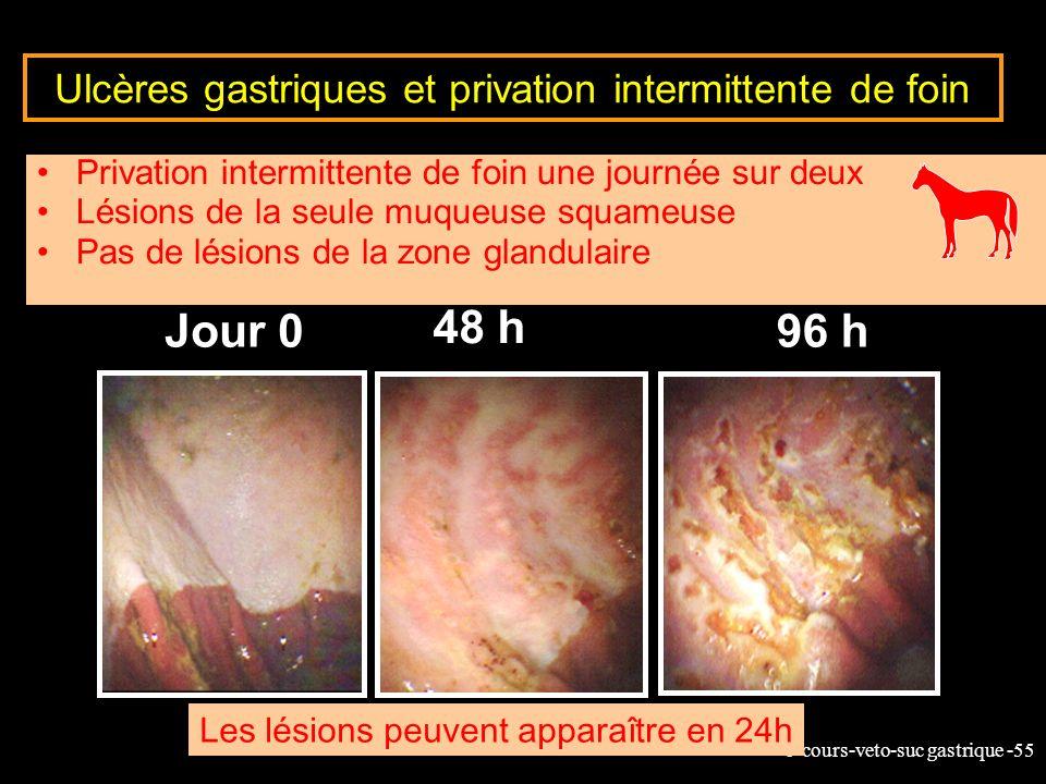 6-cours-veto-suc gastrique -55 Jour 0 48 h 96 h Ulcères gastriques et privation intermittente de foin Privation intermittente de foin une journée sur