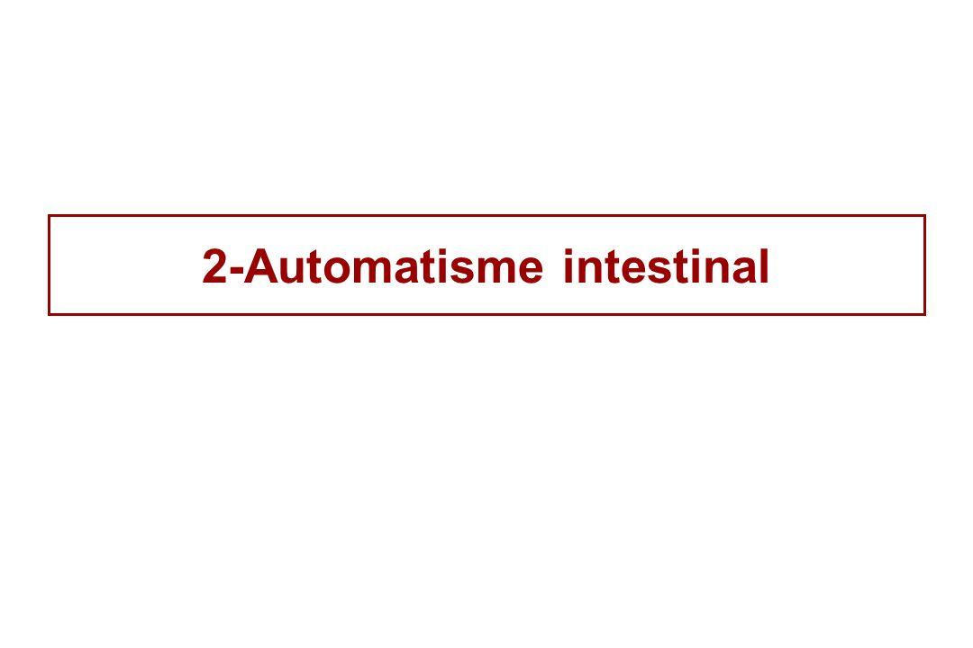 2-Automatisme intestinal