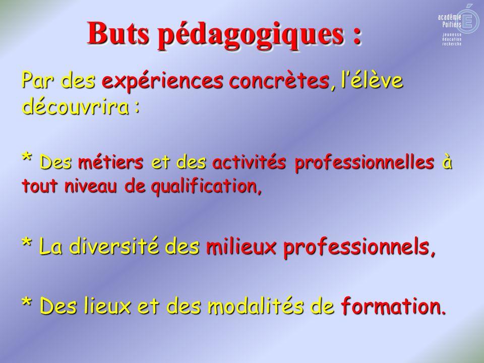 Buts pédagogiques : Par des expériences concrètes, lélève découvrira : * Des métiers et des activités professionnelles à tout niveau de qualification,