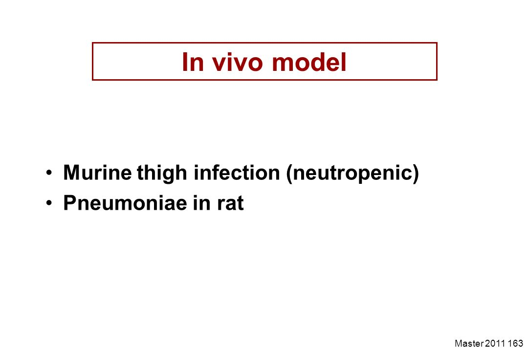 Master 2011 163 In vivo model Murine thigh infection (neutropenic) Pneumoniae in rat