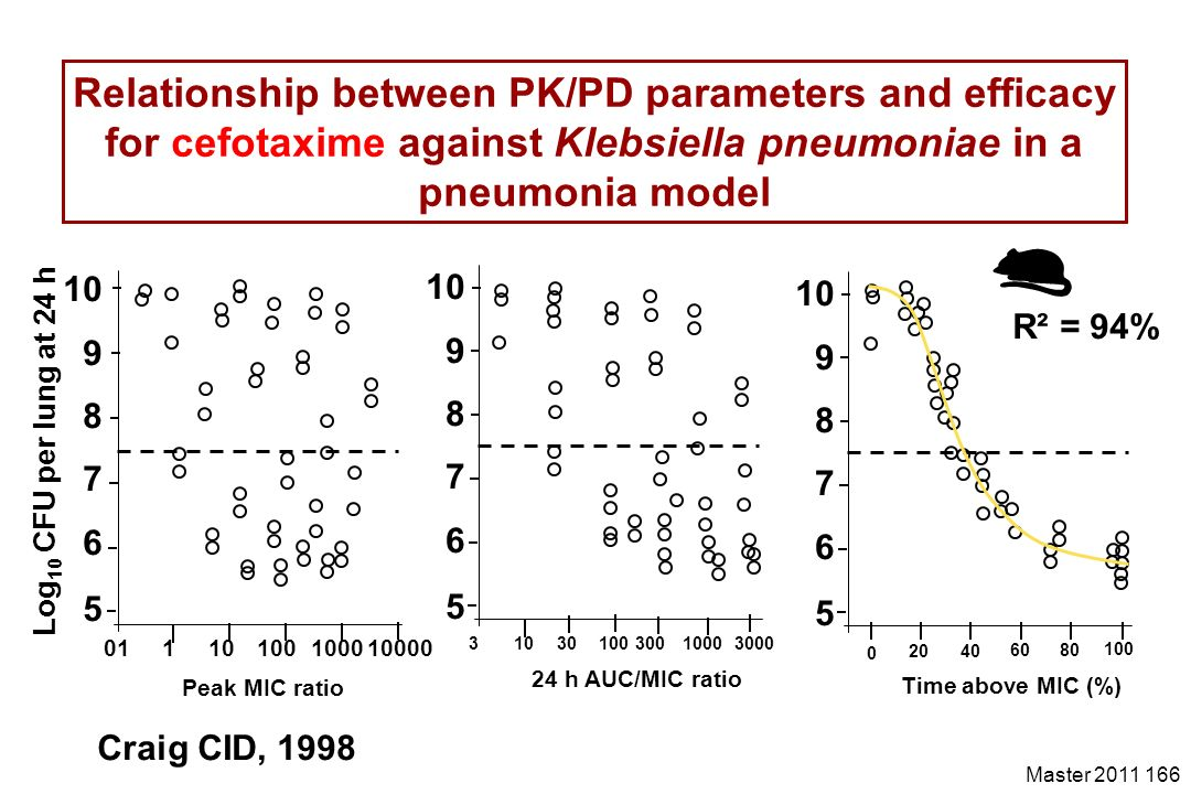 Master 2011 166 Relationship between PK/PD parameters and efficacy for cefotaxime against Klebsiella pneumoniae in a pneumonia model 31030100300100030