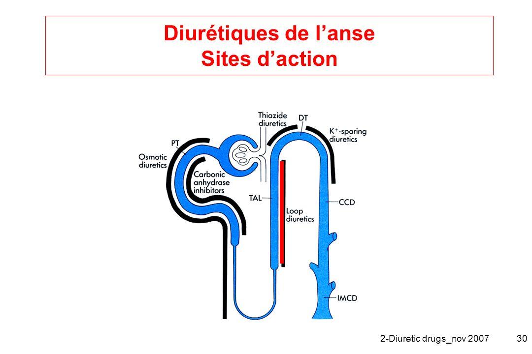 2-Diuretic drugs_nov 200730 Diurétiques de lanse Sites daction