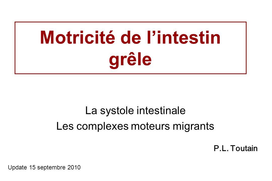 Motricité de lintestin grêle La systole intestinale Les complexes moteurs migrants Update 15 septembre 2010 P.L. Toutain