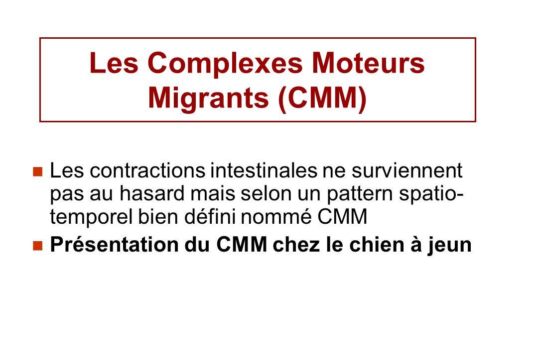 Les Complexes Moteurs Migrants (CMM) Les contractions intestinales ne surviennent pas au hasard mais selon un pattern spatio- temporel bien défini nom
