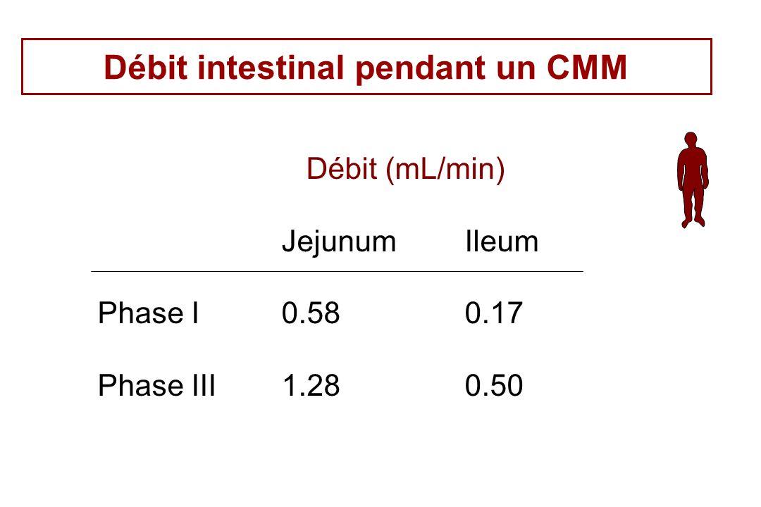 Débit intestinal pendant un CMM Débit (mL/min) JejunumIleum Phase I0.580.17 Phase III1.280.50