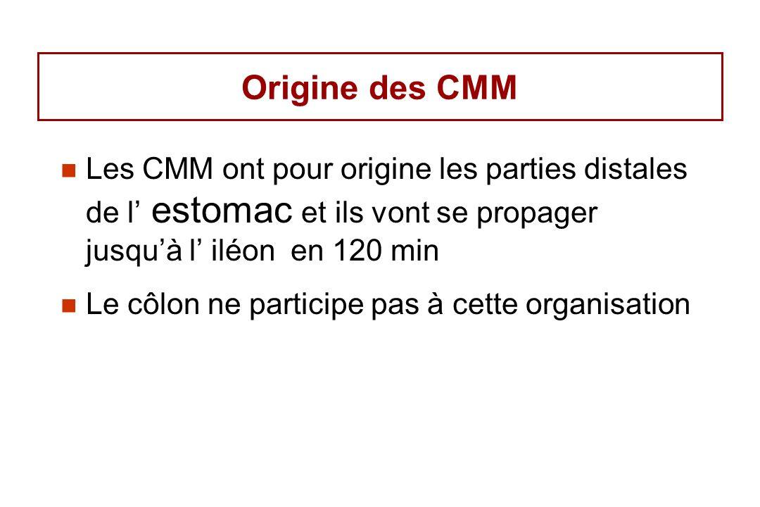 Origine des CMM Les CMM ont pour origine les parties distales de l estomac et ils vont se propager jusquà l iléon en 120 min Le côlon ne participe pas