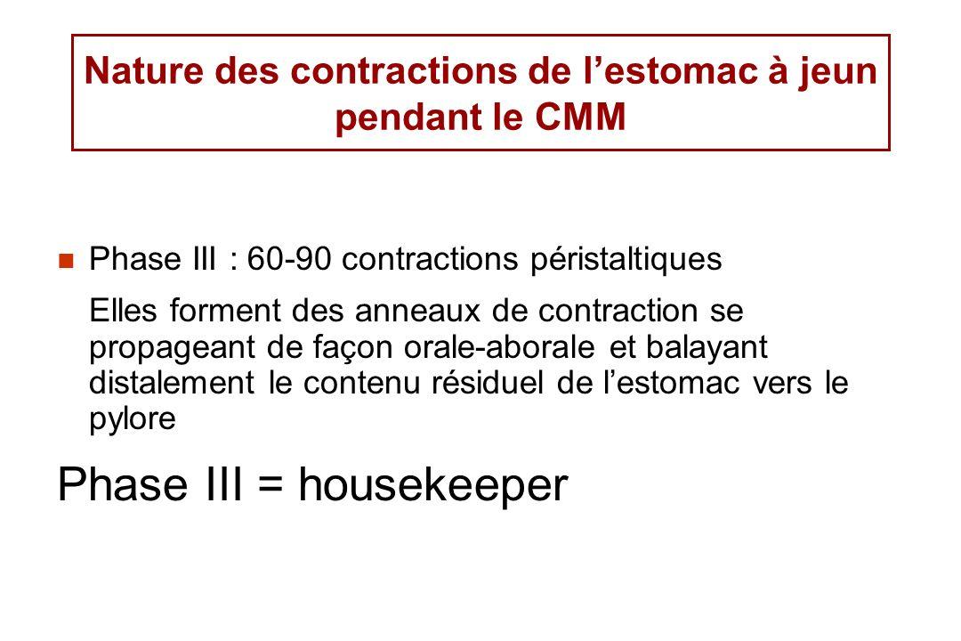 Nature des contractions de lestomac à jeun pendant le CMM Phase III : 60-90 contractions péristaltiques Elles forment des anneaux de contraction se pr