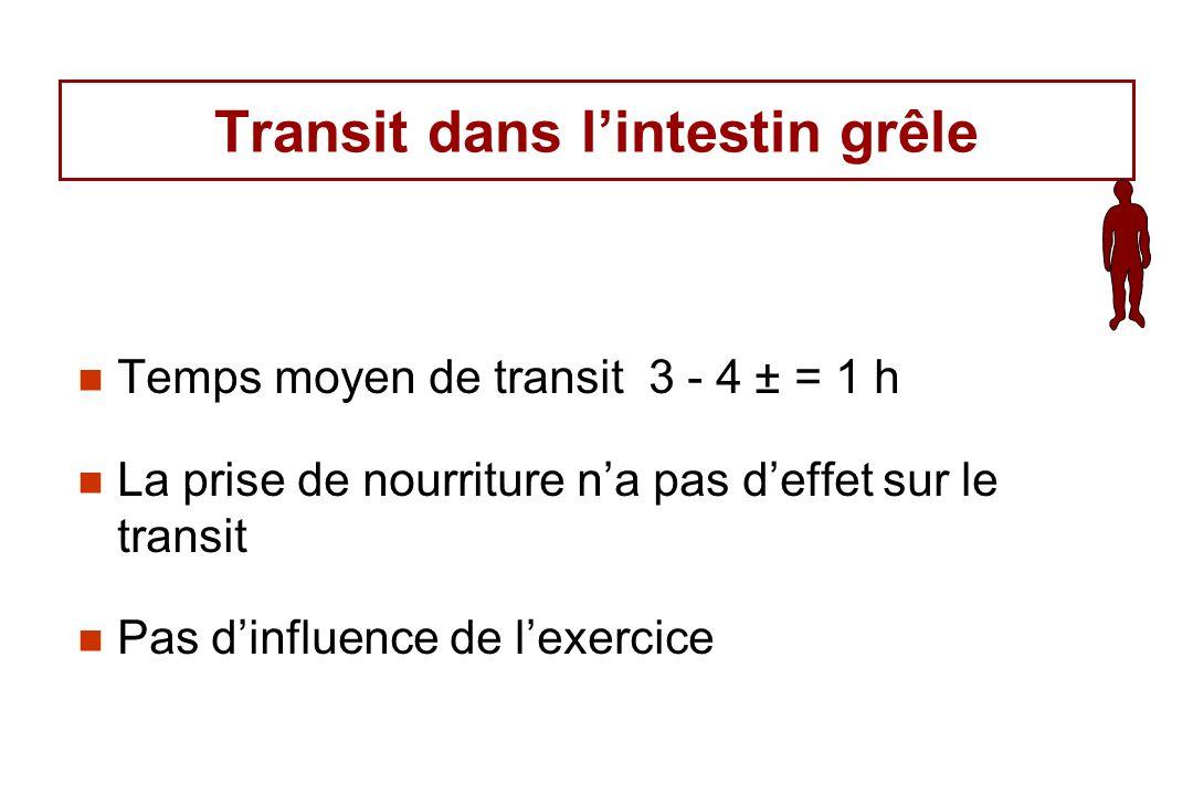 Transit dans lintestin grêle Temps moyen de transit 3 - 4 ± = 1 h La prise de nourriture na pas deffet sur le transit Pas dinfluence de lexercice