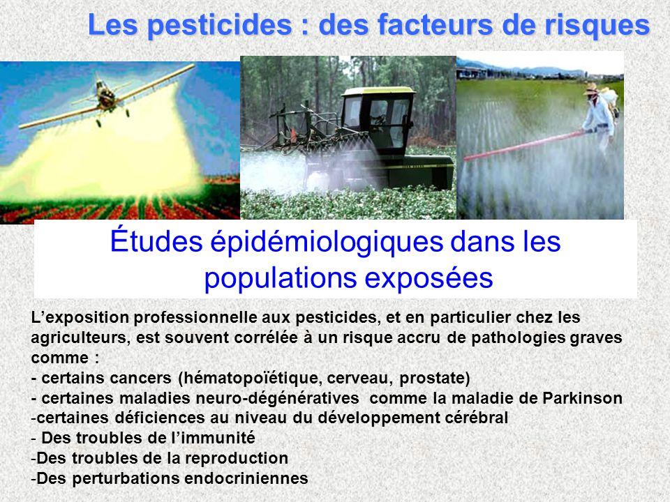 Lexposition professionnelle aux pesticides, et en particulier chez les agriculteurs, est souvent corrélée à un risque accru de pathologies graves comm