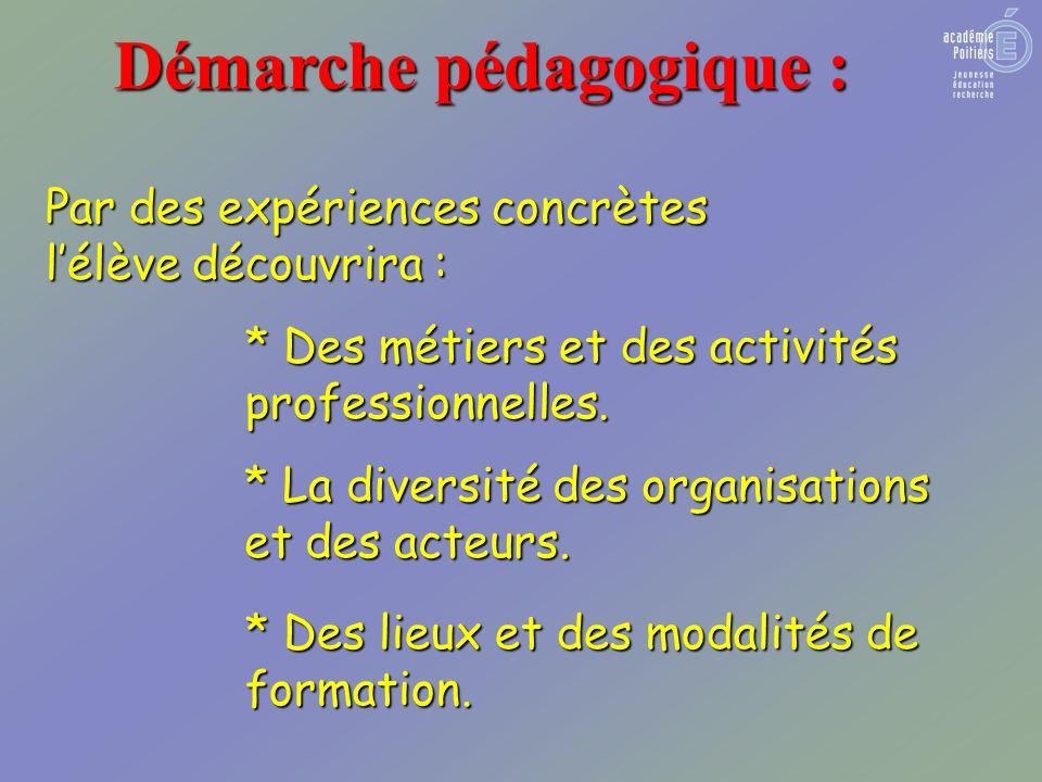 Démarche pédagogique : Par des expériences concrètes lélève découvrira : * Des métiers et des activités professionnelles.